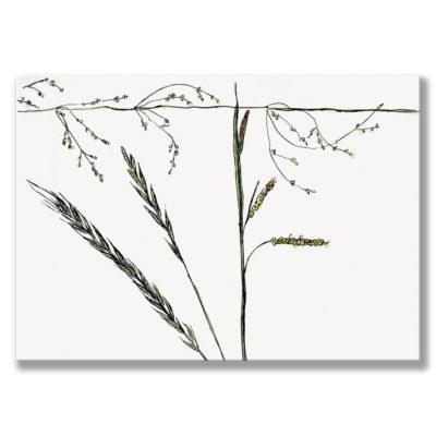 Kunstdruck Gras II